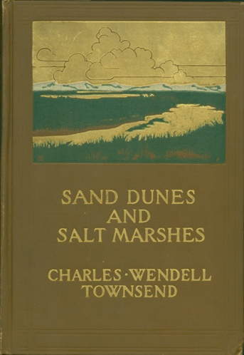 Sand Dunes and Salt Marshes